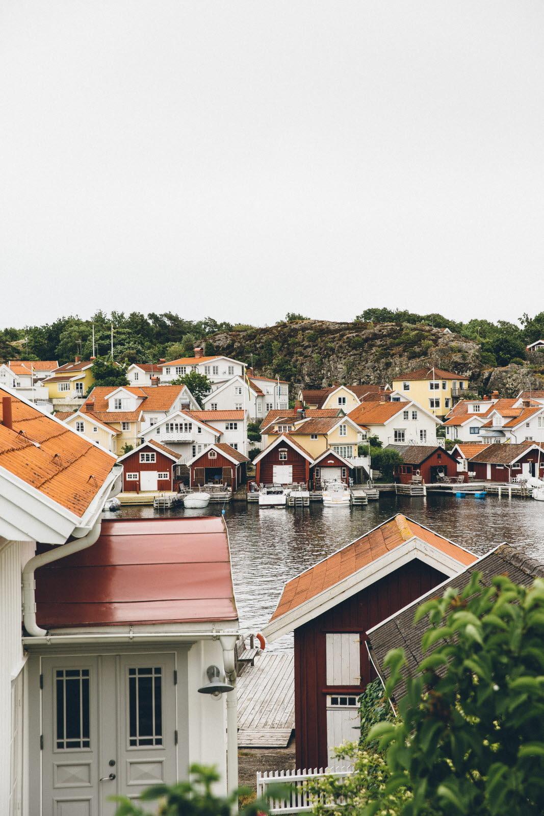 west-sweden-lobster-and-swan-12- Photo Cred Jeska